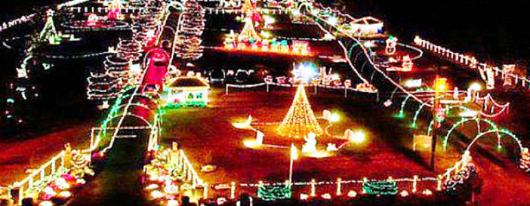Lights on the Bay - The Top 15 US Parks With Spectacular Holiday Lights - Park Warehouse