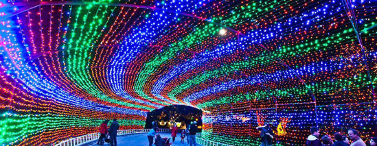 1. Trail of Lights