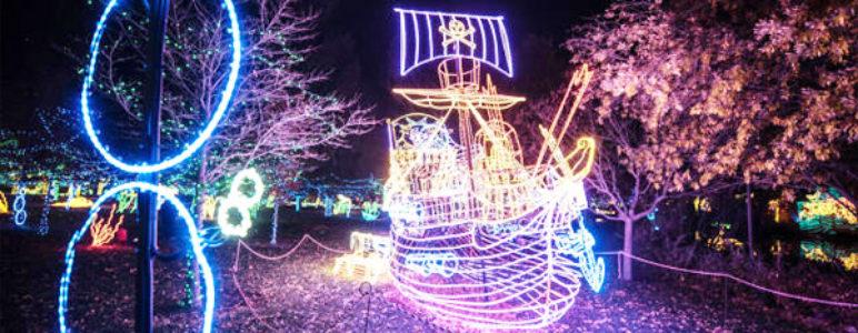 River of lights at the Botanical Gardens