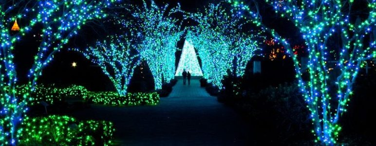atlanta botanical garden christmas lights New Holidays at the Atlanta Botanical Gardens Follow our unique