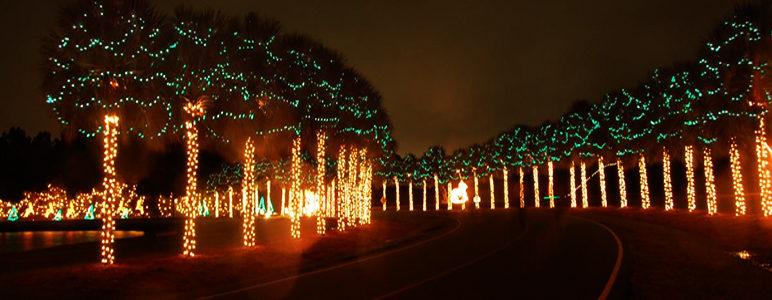 festival-of-lights2